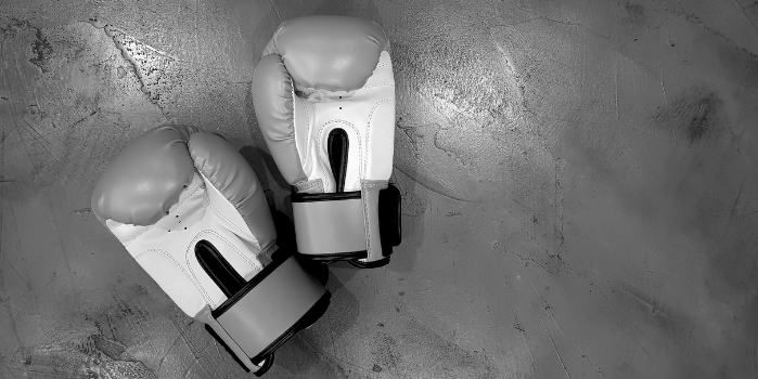 Boxing gloves | Preparing for IR35 changes as a Contractor